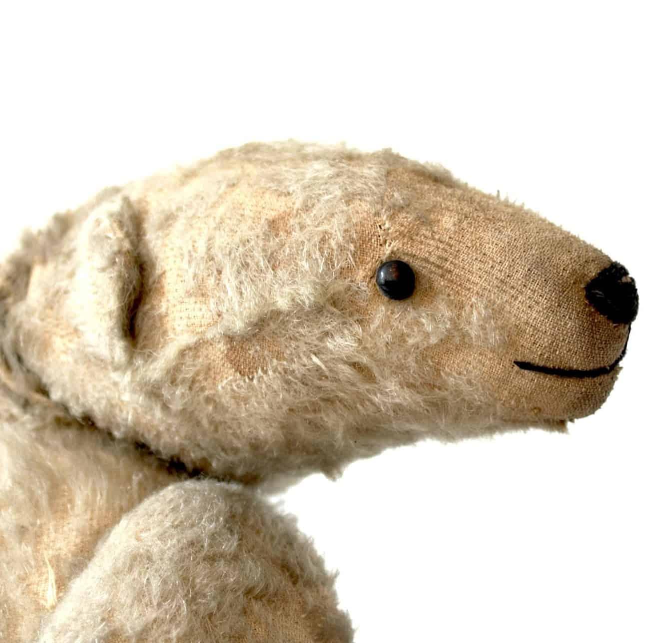 Histoire de l'ours Steiff, une peluche à collectionner.